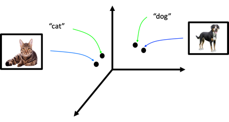 functions represented image