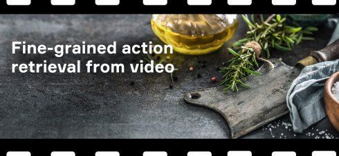 Fine-grained action retrieval