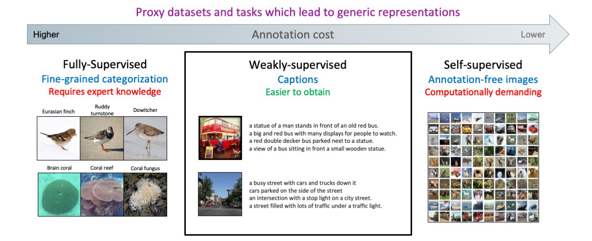 Figure 1 Reducing the annotation cost with captions