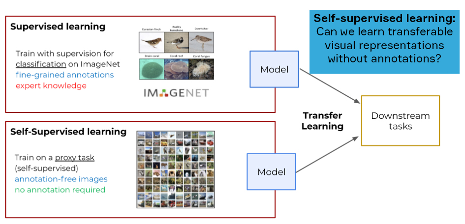 Supervised learning vs self-supervised learning