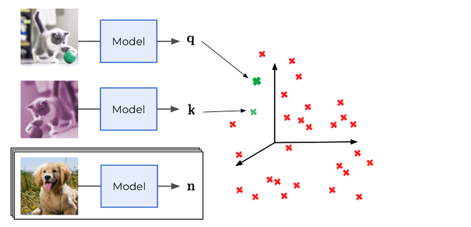 contrastive self-supervised learning
